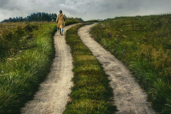 path, rural, nature-6567149.jpg